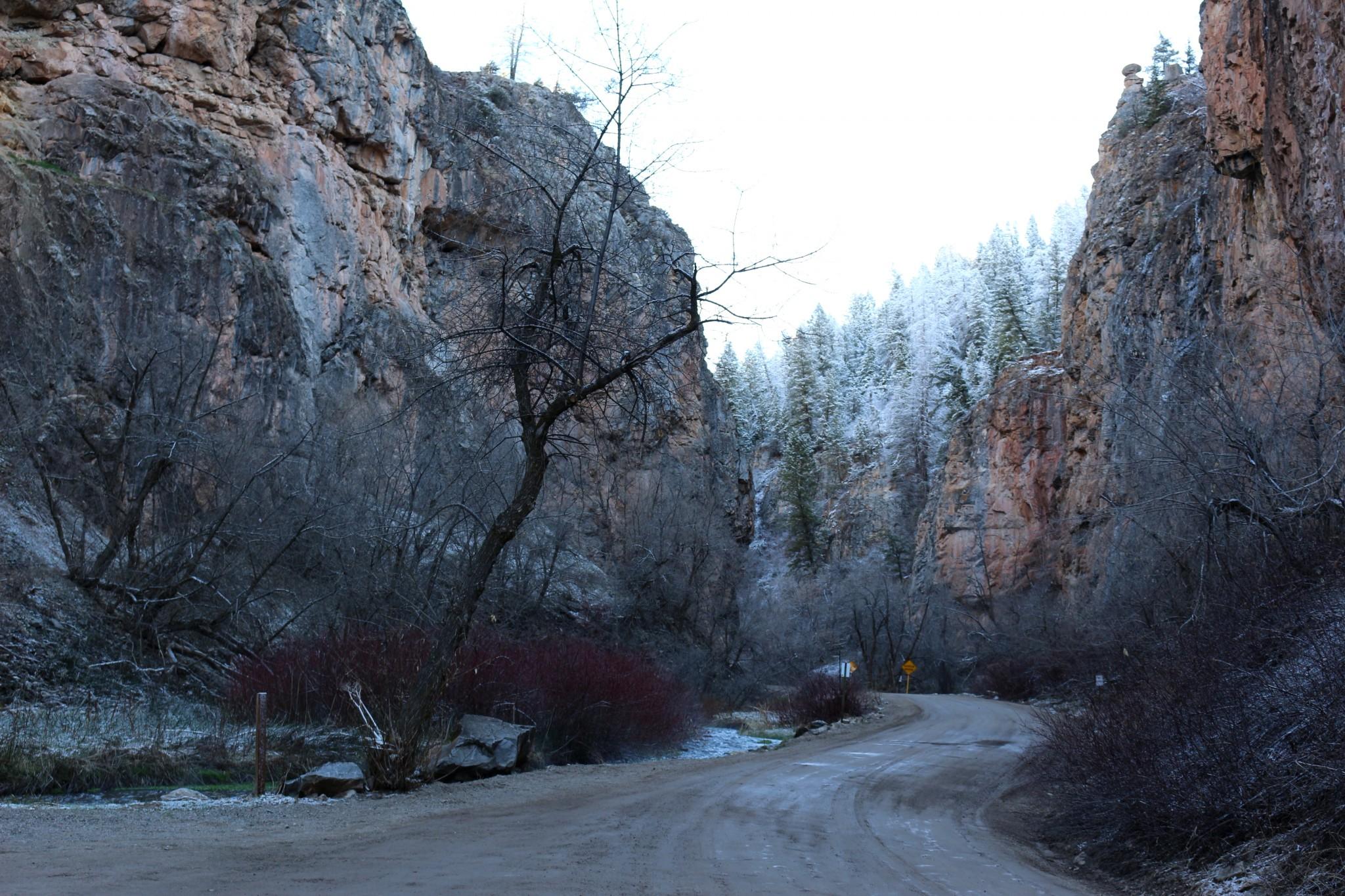 Les falaises bien au frais dans le canyon de Rifle